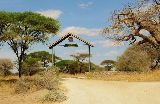 My African Safari - Tarangire Safari Camp