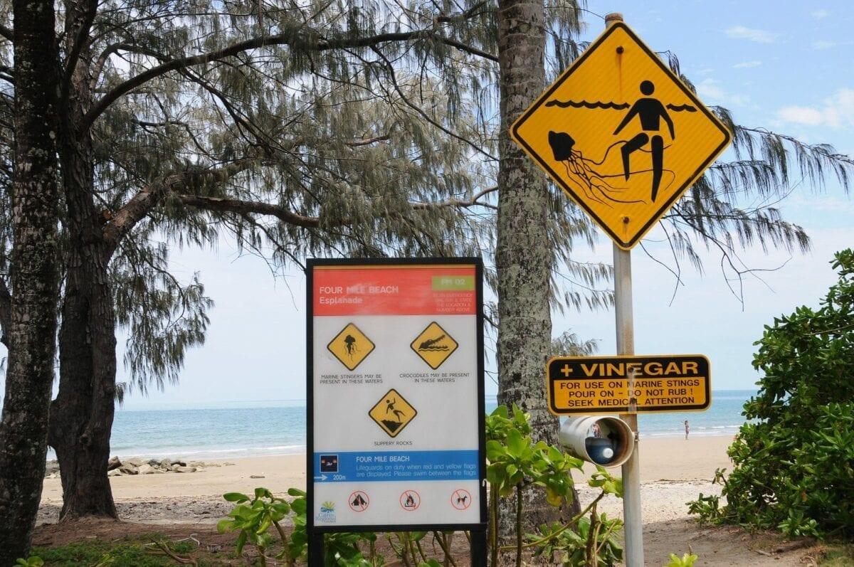 stinger sign on four Mile Beach