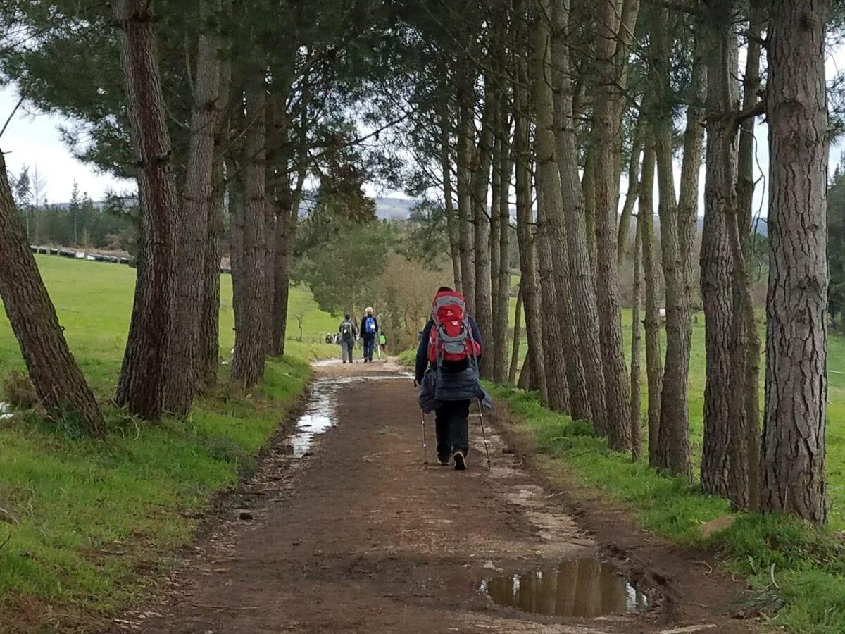 The Way - 'The French Way' Camino de Santiago