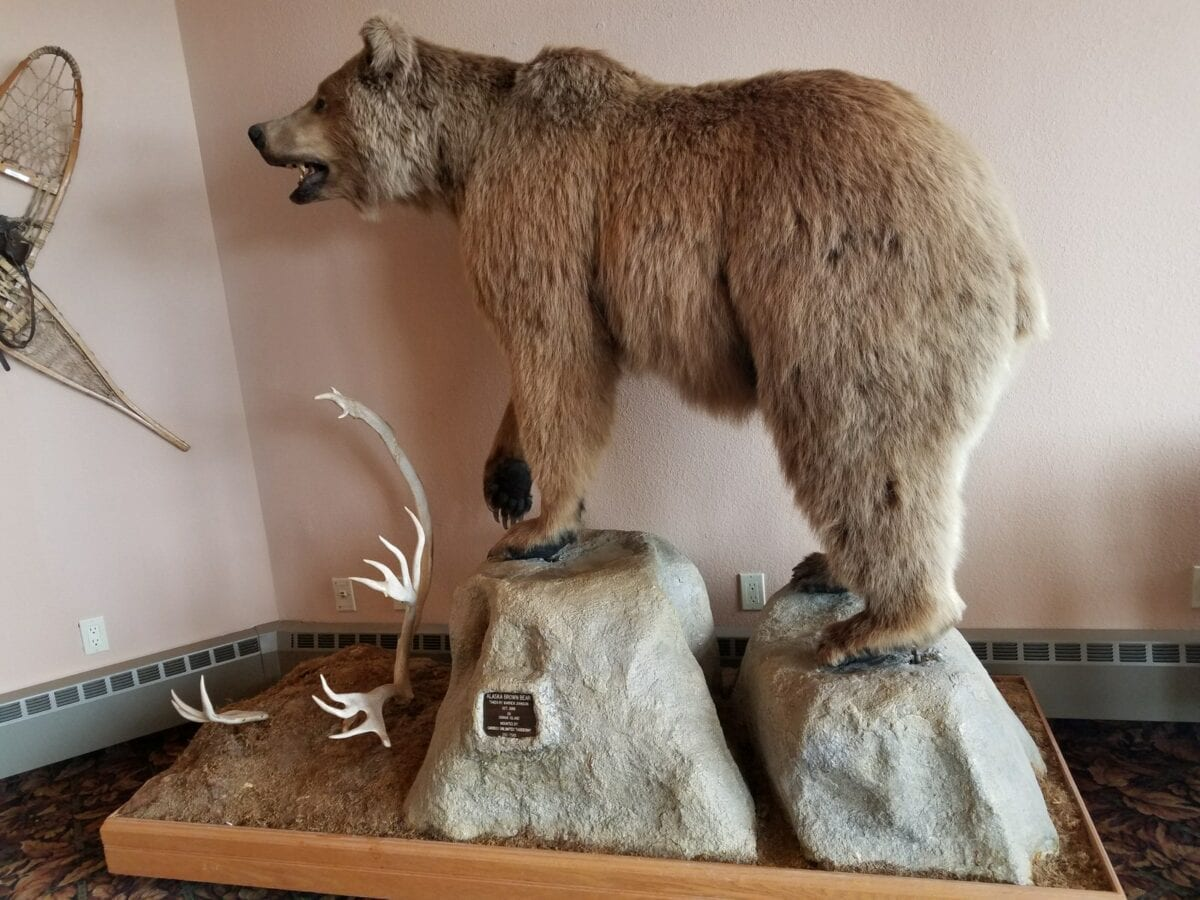Alaska is a Giant Man Cave - The Outdoors Person' Dream